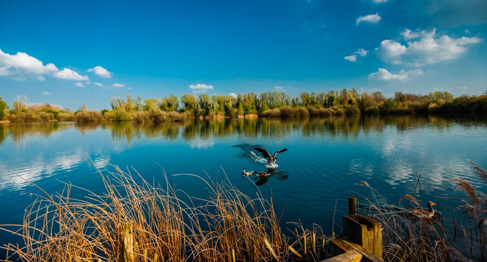 cycle routes Cambridge Milton Country Park