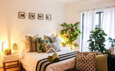 10 Nature-Inspired Room Decor Ideas For Your Student House