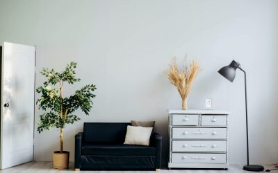 Student Home Decor: 7 Ways To Make Your House A Home